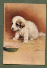 Pyrenean Mountain  tobacco cigarette card postcard dogs 1930's #045
